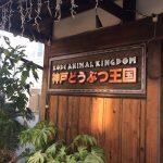 動物と身近にふれあえる!神戸どうぶつ王国はちいさなお子様にオススメ