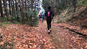 マラソンとトレイルランの両方楽しめるトレイルマラニックを初体験